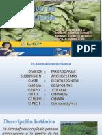 SIENBRA DE ALCACHOFA 08.pptx