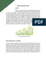 diseño de bioreactores  miercoles.docx