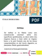 COPIA Fistulas Enterocutaneas