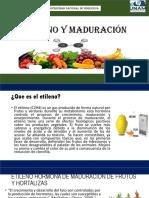Etileno y Maduración Exposicion