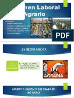 Régimen Laboral Agrario [Autoguardado]