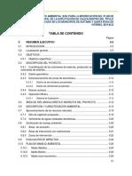 Resumen Ejecutivo San Antonio.pdf