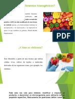 Expo de Alimentos Transgenicos