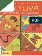um conceito antropológico - Roque de Barros Laraia.pdf