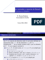 beamer-ana-fun-AF.pdf
