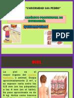 EDITH QUEMADURAS.pptx
