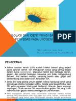 Bakte 2 Bakteri pada Urogenital.pptx