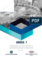 Anexa 1 Strategie (Situatia Actuala) v2.0