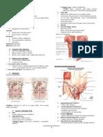 [Doc Isidro] The Abdominal Wall and Peritoneum (1).pdf