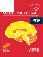 Neurofisiología - Ana M.a Barber.pdf