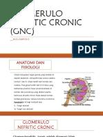 GNC (Glomerulo Nefritic Cronic) pada anak