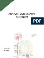 anatomi sistem saraf autonom.pptx