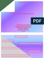 Diapositiva Leyand Casi Ultima