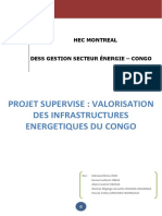 DESS CONGO Valorisation Rapport (1)