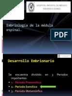 Embriologia Xxx