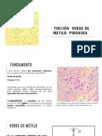 Tinción Verde Metilo-PIRO