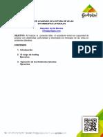 Performing_Avanzado_en.pdf