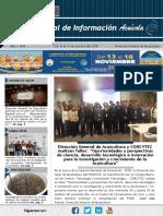 Boletin N°8 Rnia.pdf