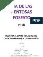 pentosas fosfato
