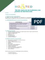Determinacion Mapa Plasmido (Enz Restriccion)