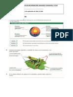 ACTIVIDADES-DE-RECUPERACION-1o-ESO-BIOLOGIA-2016(3)
