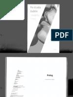 254066402-Pe-Strada-Dublin-Samantha-Young.pdf