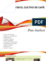 Parasitoides de La Cochinilla