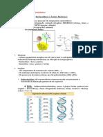 Bioquímica Resumo Av 3