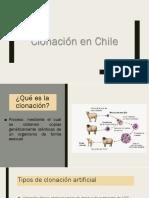 Clonación en Chile