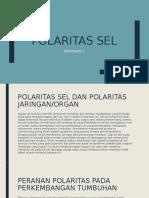 Polaritas Sel
