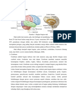 1.1 Anatomi dan Fisiologi Otak.docx