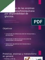Regulacion Hexoquinasa Glucoquinasa Por Disponibilidad de Glicemia L.P.M