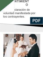 Consentimiento Dip (1)
