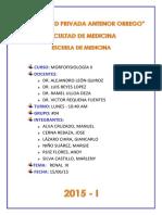 Informe (caso #12).docx