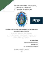 Monografia de Lagunas de Estabilizacion