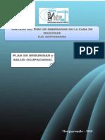 Politicas y Plan de Ssoma Pintado Piso Generador - Vicp Scrl