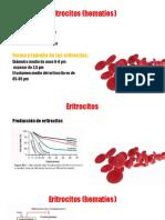 Eritrocitos (hematíes).pptx