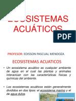 ECOSISTEMAS ACUÁTICOS (1).pptx