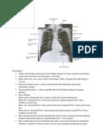 radioanatomy