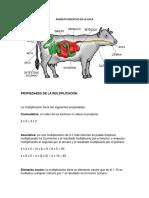 Vaca y Propiedades Numeros