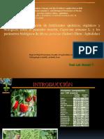 PP_ARTICULO.pptx