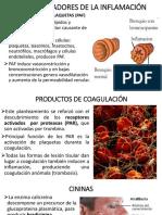 OTROS MEDIADORES DE LA INFLAMACIÓN.pptx
