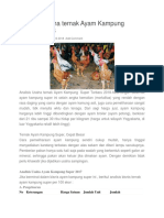 Analisis Usaha Ternak Ayam Kampung Terbaru 2018