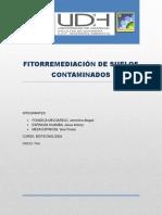 271303720-Trabajo-de-Fitorremediacion.docx