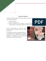 Pediatria Anestesia