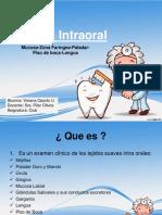 examenintraoral-120428235731-phpapp02