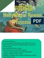 Protozoa Bagas Salinan