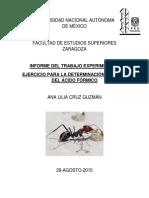 Ka Del Acido Formico Informe2