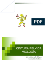 28887078-Cintura-Pelvica.pdf