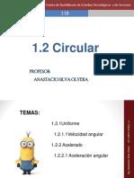 Presentación 5 Circular